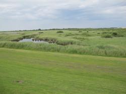 Naturreservat Wattenmeer