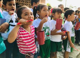 Programa piloto de cepillado diario en escuelas primarias del municipio de Iguala de la Independenci