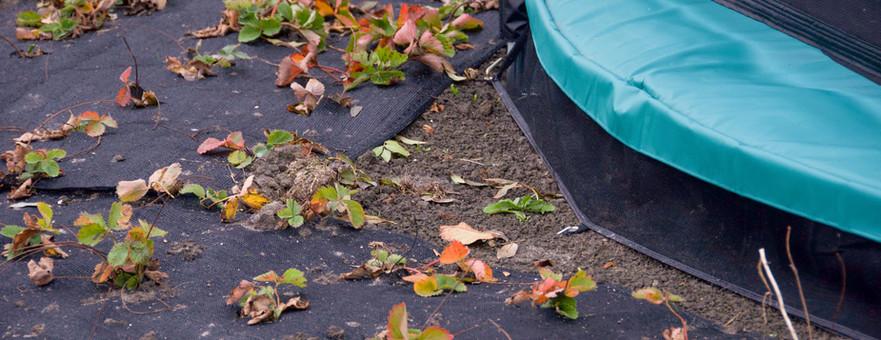 Moestuin trampoline