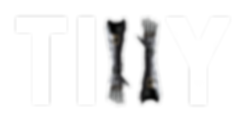 Tilly Logo1 white text.png