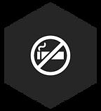 SEP.Icons_NoSmoking.png