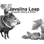 PartnerLogos_JavelinaLeap.png