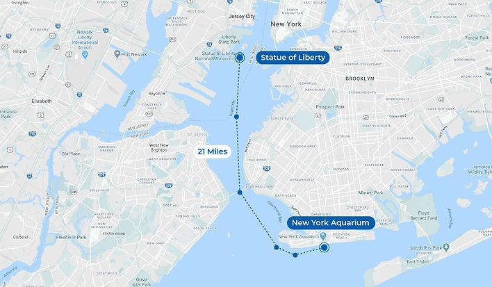 plus map_New York.jpg