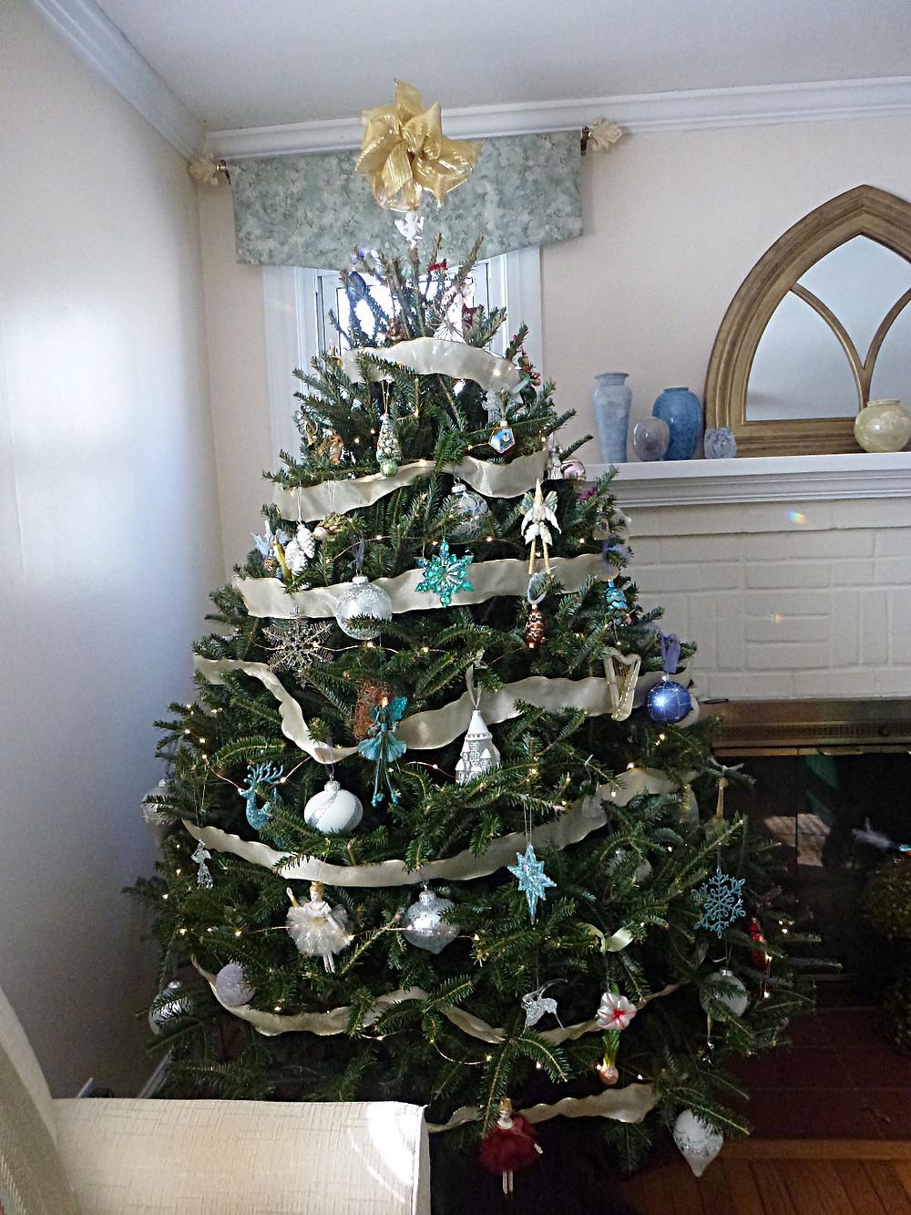 TROSA Christmas Tree Jan. 4, 2018