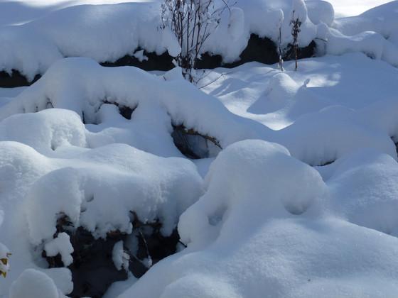 Record Snowfall at RDU
