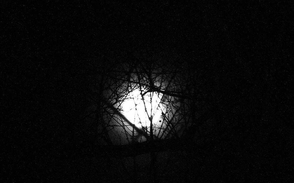 Jan. 12, 2017 full moon