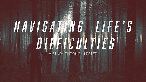 Navigating Life's Difficulties _Forest (