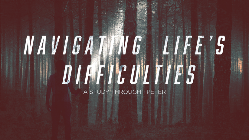 Navigating Life's Difficulties _Forest.p