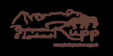 logo_rupp-pferd-landheimet-def-01.png