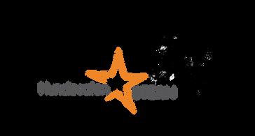 logo stern-01.png