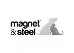magnet-steel.jpg