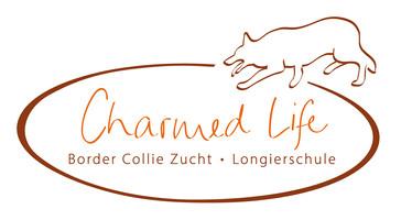 Logo_StefanieCollies-def-01.jpg