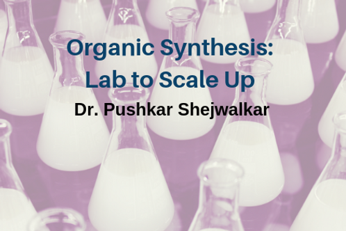Organic Synthesis: Lab to Scale Up