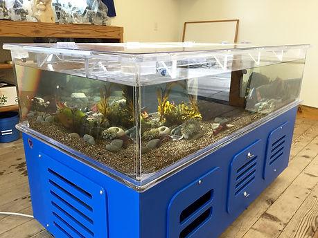 100 Gallon Touch Tank Camp Ocean Pines,