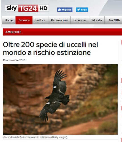 In Italian, Sky covers our Science Advances paper