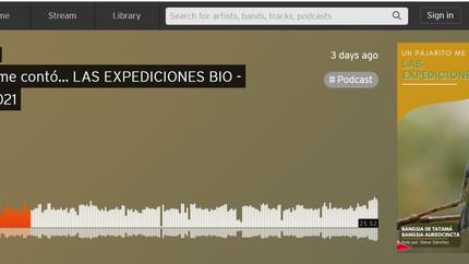 """Podcast """"Un pajarito me contó"""" - Javeriana Cali y Colombia BirdFair 2021"""