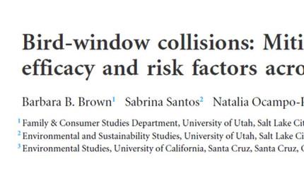 New paper on bird-window collisions mitigation