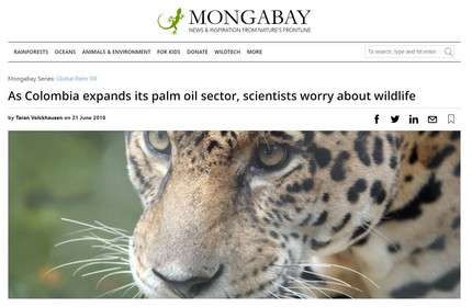 Mongabay discusses our recent oil palm - threatened fauna paper