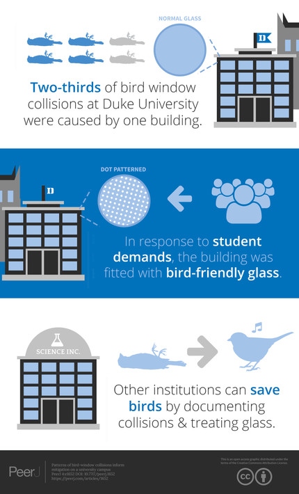 Paper: bird-window collisions and mitigation action at Duke University