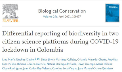 New paper on the impact of the lockdown on citizen science reporting of biodiversity