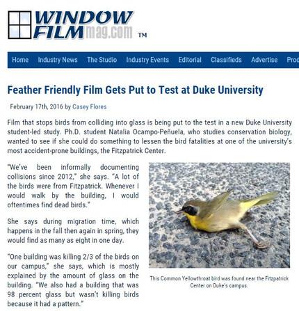 Window Film Magazine interview