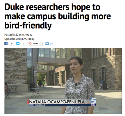 Interview with local news WRAL about bird-window collisions at Duke