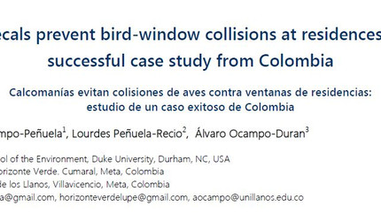 Paper: preventing collisions at home with decals