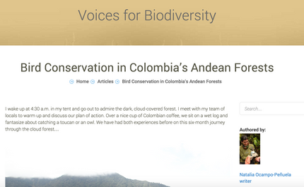 Article: Bird Conservation in Colombia's Andean Forests