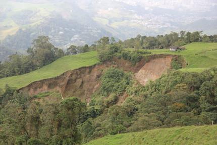Paper: landslide prevention complements bird conservation