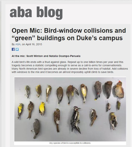 American Birding Association blog post