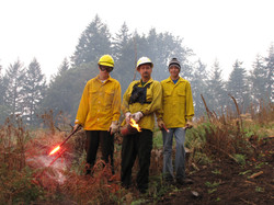 Reinhart Burn 093