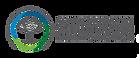 Schusterman-logo_official_h-624x260.png