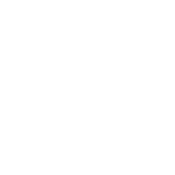 GRPro-phone-icon.png