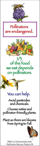 pollinator long thin.jpg