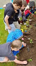 kids plant 2.jpg