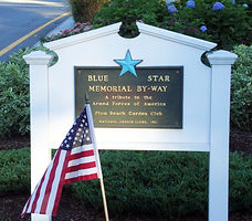 blue star sign flag fixed copy 2.jpeg