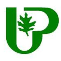 city of UP logo image.jpg