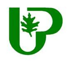 city of UP logo image.jpg