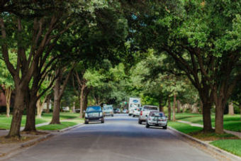 Park Cities tree lined street.jpg