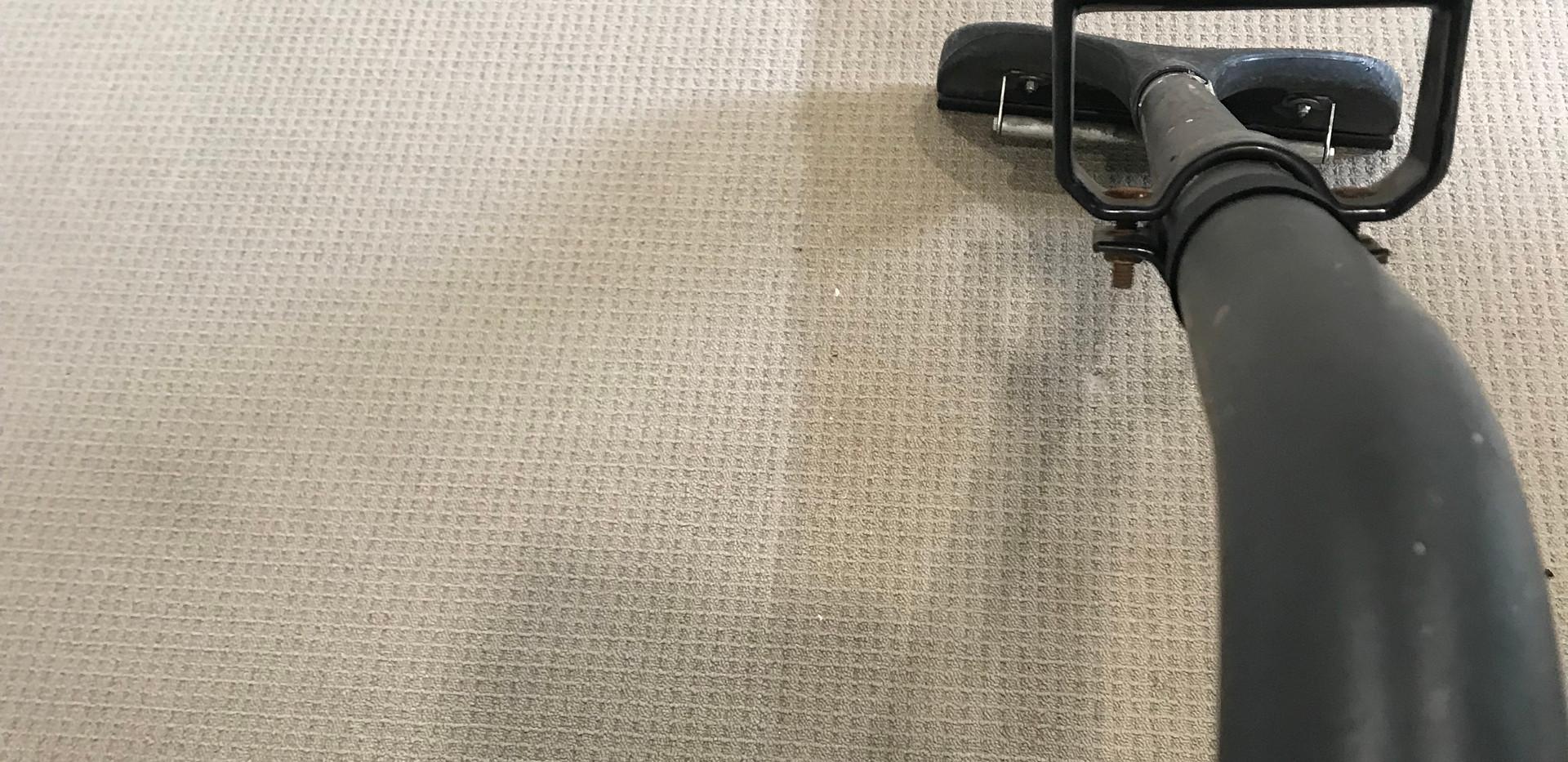 carpet steam clean 2.jpg