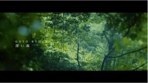 Ryoga  Goto「深い森」