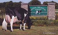 GreenMeadow Wyn 6318 and Farm sign.jpg