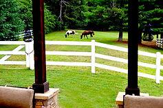 az 9607 horses near fireplace.jpg
