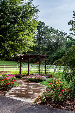 Rock path small pergola copy.jpg