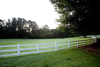 side pasture.jpeg