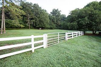 side 2 pasture.jpeg