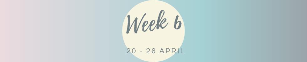Week 6.png