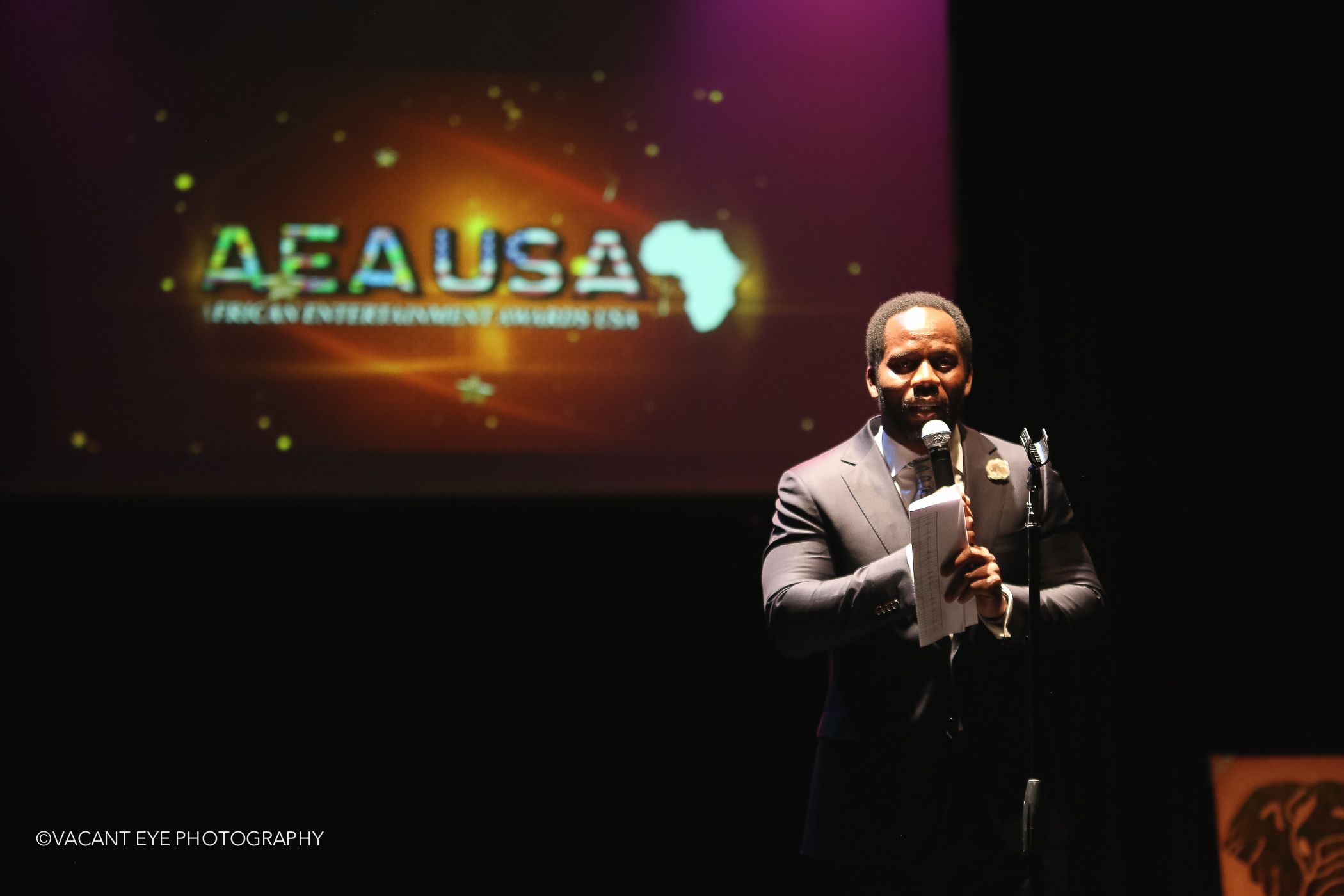 African Entertainment Awards 2015