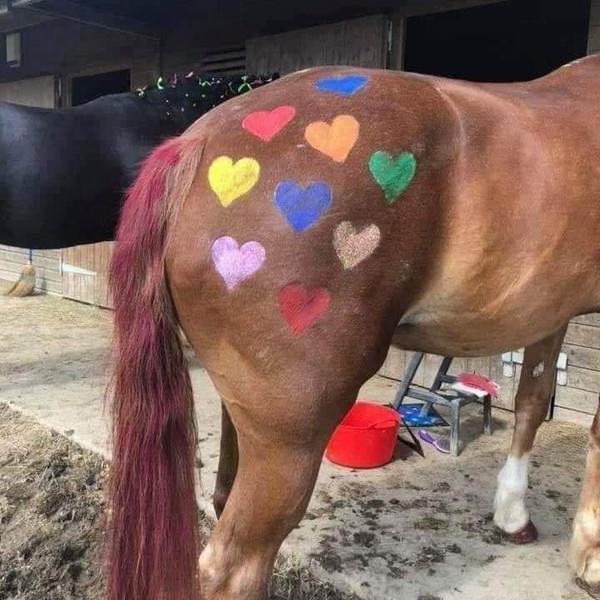 Pony paint