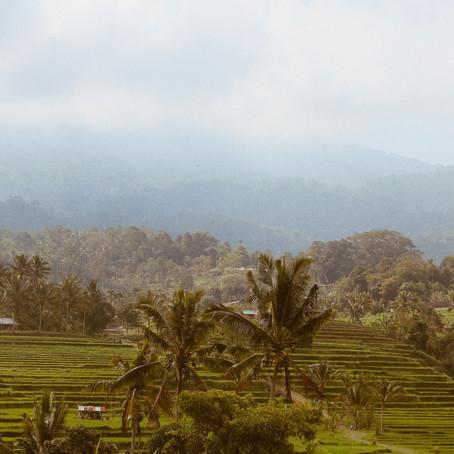 Bali Gezi Rehberi ve Görülecek Yerler Listesi